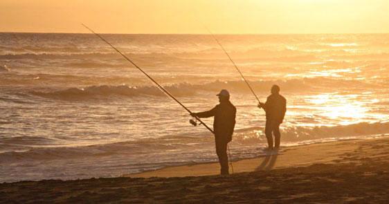 Surf fishing mornington peninsula