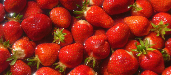 Tattoo and piercing cincinnati oh free images of strawberries the